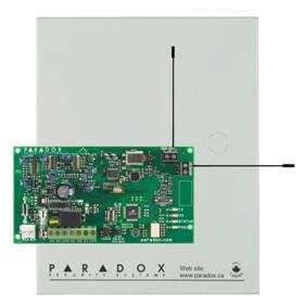 RPT1 PARADOX