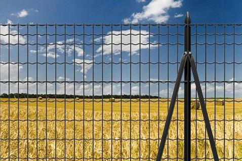 protezione recinzione
